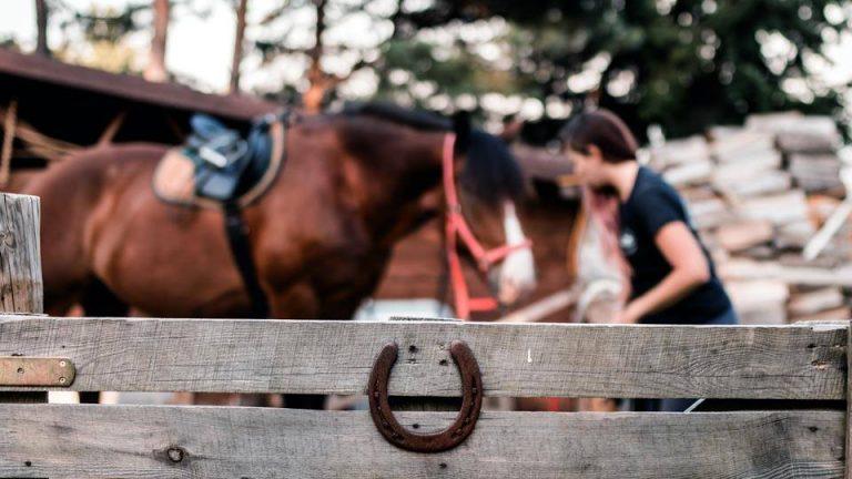 chata hresna kone