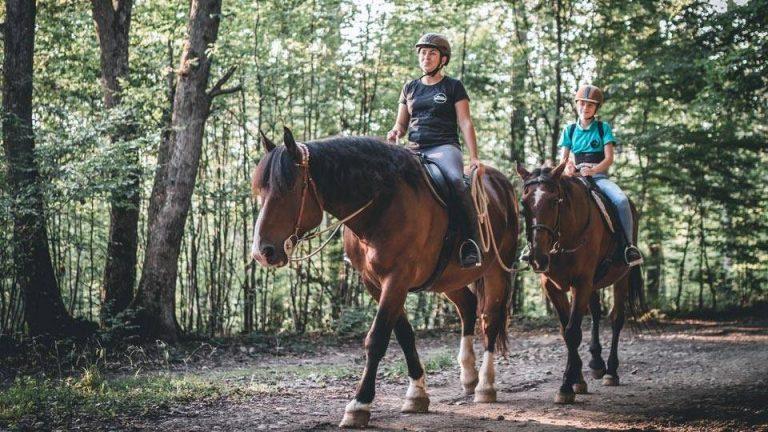 prechadzky na koni kosice